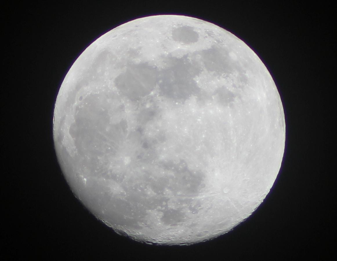 TS 70 luna crop