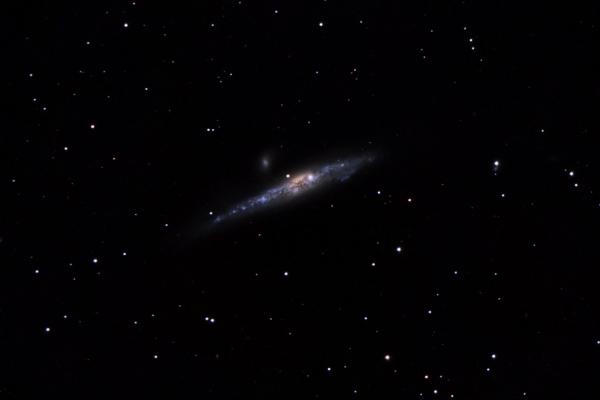 NGC 4631 - Galaxia de la Ballena (Crédito: Gustavo Sánchez/Observatorio Guajataca)