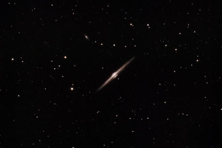NGC 6545 - Galaxia de la Aguja en Coma Berenices (Crédito: Gustavo Sánchez/Observatorio Guajataca)