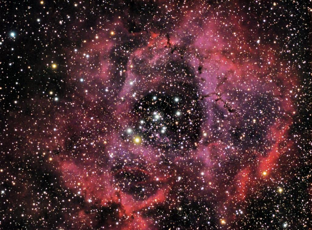 NGC 2244 - Nebulosa de la Roseta en la Constelación de Monoceros.
