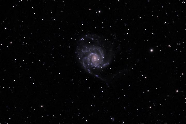 Galaxia Espiral en la constelación de la Osa Mayor. (Crédito: Gustavo Sánchez/Observatorio Guajataca)